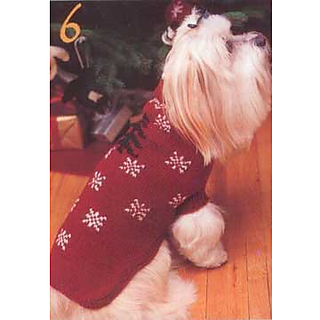 Dog_coat_small2