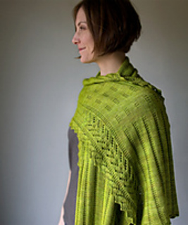 Paravelwrap1_small2