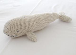 Zoe-whale-1_small2