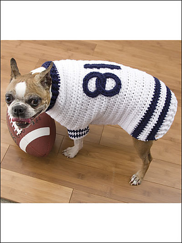 Football Jersey by Lisa Marchand Harris