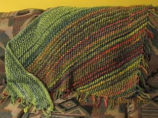 Monet_s_garden_shawl_small2