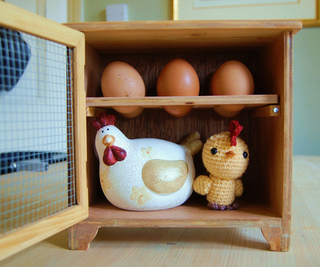 Chick_6_egg_house_small2