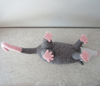 Opossum2_small2