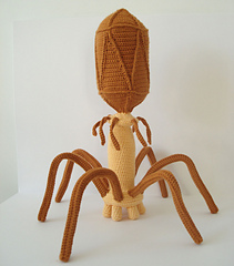 Bacteriophage7_small
