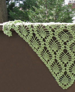Shawl_-_tescellatingpinecones-picotedge-honeydew-030712_small2