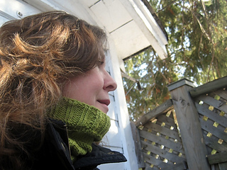 Travel_cowl_-_9_small2