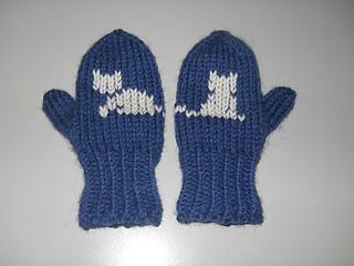 Handschuhefinn_180215_small2