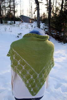 Radhopeshawl2_small2