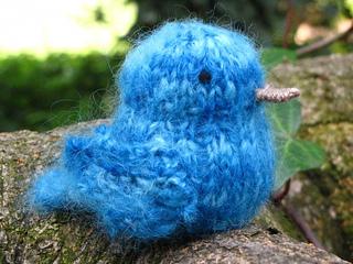 Bluebird8-600x450_small2