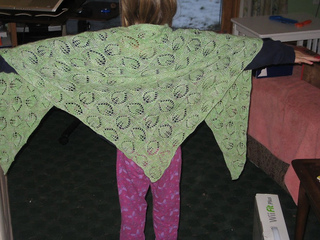 Dianna_20shawl_20004_small2