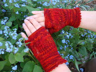 Stricken_anja_842_small2