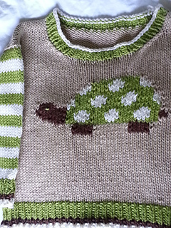 Turtle_pulli_front_small2