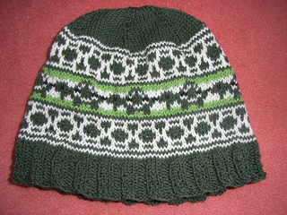 Turtle_beanie1_small2