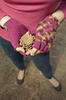 Dykhuizen_20mitts_202_small2