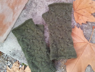 Mitts-foliage_small2