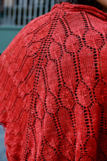 Verb_shawl_2_small2