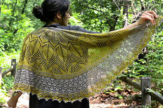 Mystery_shawl_wrapped_4_small2
