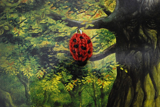 Lady_bug_small2