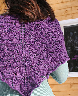 Rsz_2shawl4_small2