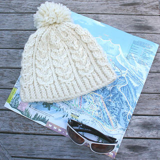 Snowbird-hat-large-600_small2