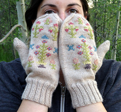 Anie_face_flat_mittens_small