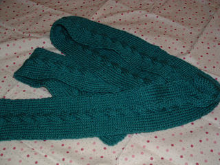 Cabled_scarf_march2009_small2