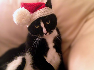 Santa-claws-2_small2