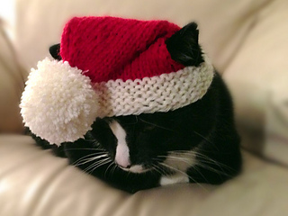 Santa-claws-5_small2