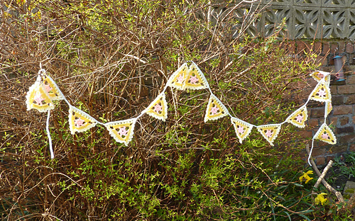 Pretty_lacy_bunting__5__medium