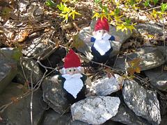 Gnome1_small