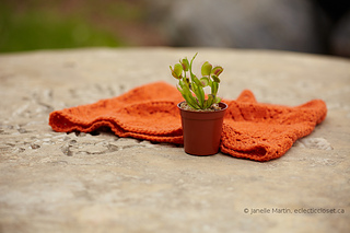 Knitting-june08-2014_mg_9270_scaled_watermarked_small2