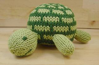 Turtle_6_edited-1_small2