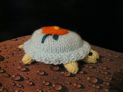Tiny_tortoise_1_001_small