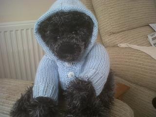 Huggable_bear_hoodie_pattern_003_small2