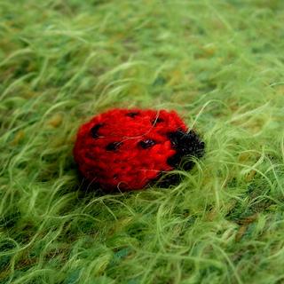 Ladybird_small2