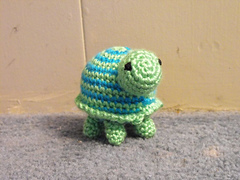 Turtle1_small