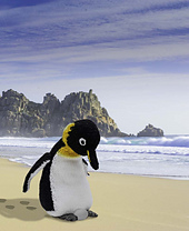 S_penguin_with_egg_on_beach_small_best_fit