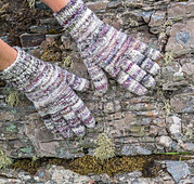 500_gloves_isle_of_skye13may2016_small_best_fit