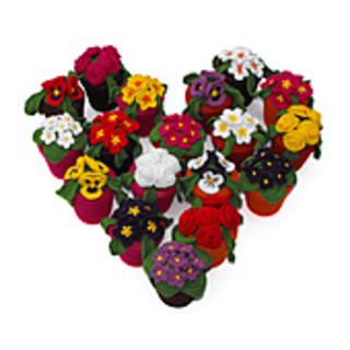 Heartflowerswhite_small2