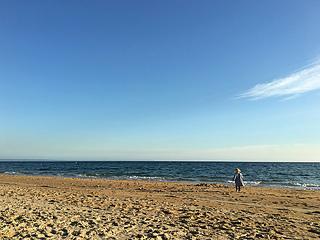 Aussie_sunshine__by_clare_devine_800px11_small2