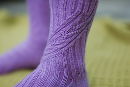 Pirouette_close_up_small_best_fit