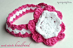 Seedstichheadband1copy_small_best_fit