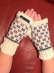 Candied_volets_mitts_small