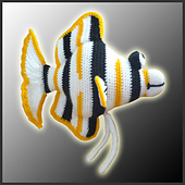 Angelfish_side_small_best_fit