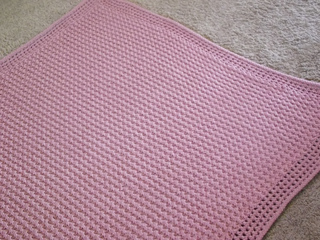 Silly_pics_and_finished_pink_blanket_012_small2