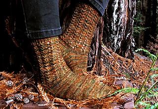 Stout-grove-socks-outside_small2