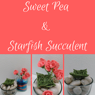 Sweet_pea___starfish_succulent__1__small2