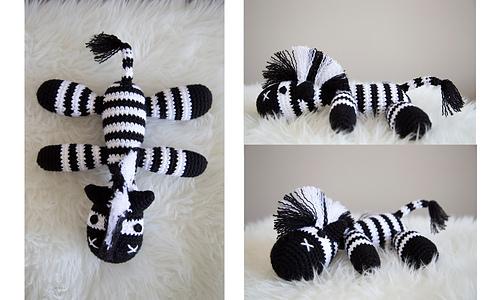 Zebra_medium