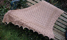 10_in_2010_shawl_small_best_fit