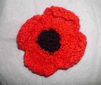 Poppies__8__small_best_fit